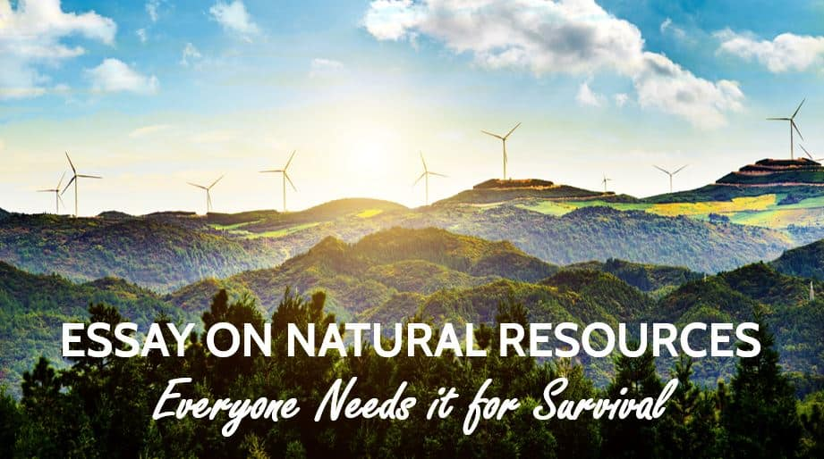Essay on Natural Resources: Everyone Needs it for Survival