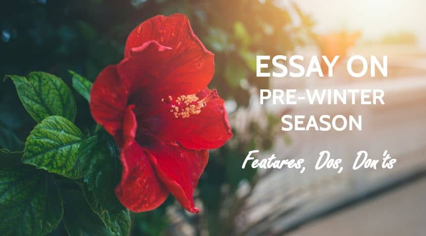 Essay on Pre-Winter season in India (Hemant Ritu) - Features, Dos, Donts