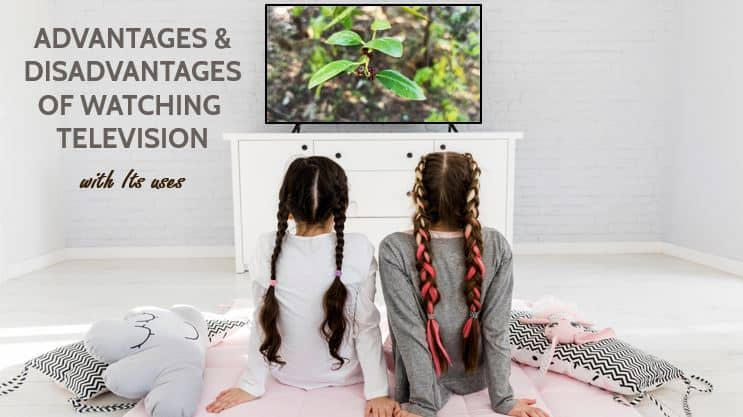 Advantages & Disadvantages of Television for Students